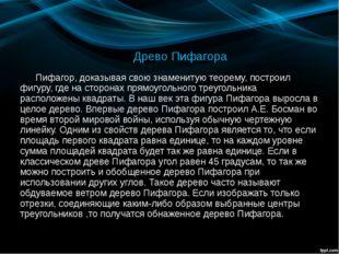 Древо Пифагора Пифагор, доказывая свою знаменитую теорему, построил фигуру, г