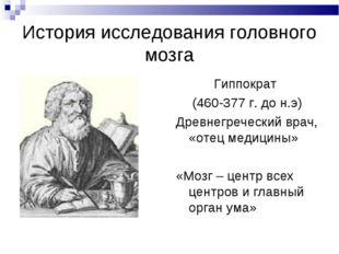 История исследования головного мозга Гиппократ (460-377 г. до н.э) Древнегреч