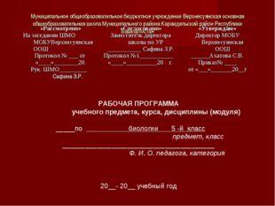 Муниципальное общеобразовательное бюджетное учреждение Верхнесуянская основна