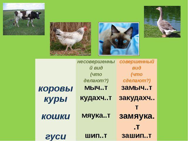 несовершенный вид (что делают?) совершенный вид (что сделают?) коровы мыч..т...