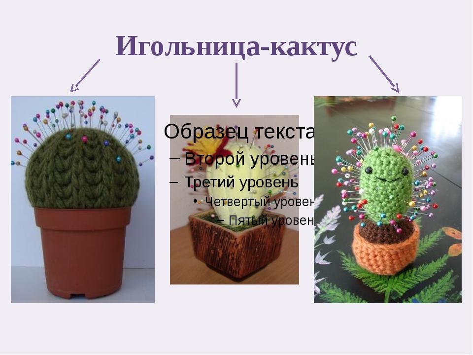 Игольница-кактус
