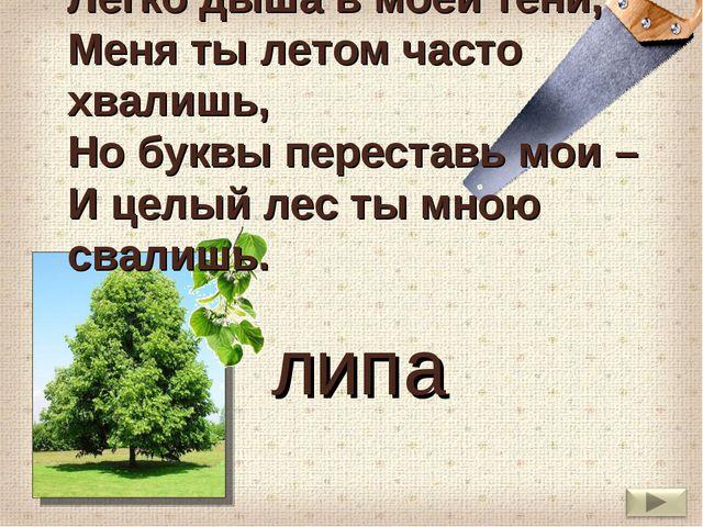 Легко дыша в моей тени, Меня ты летом часто хвалишь, Но буквы переставь мои –...
