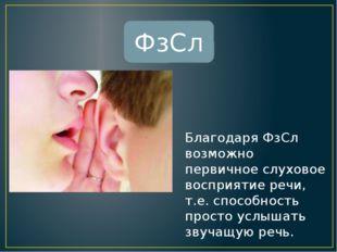 - это основной языковой компонент, обеспечивающий понимание речи ФнСл - не яв