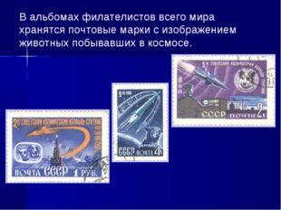 В альбомах филателистов всего мира хранятся почтовые марки с изображением жив