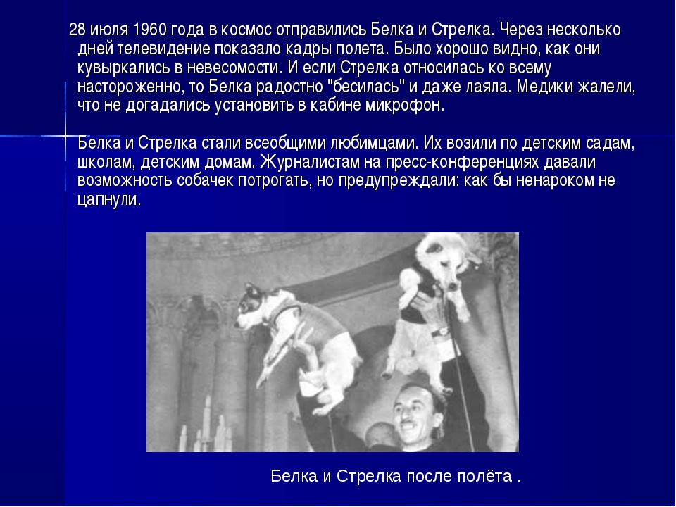 28 июля 1960 года в космос отправились Белка и Стрелка. Через несколько дней...