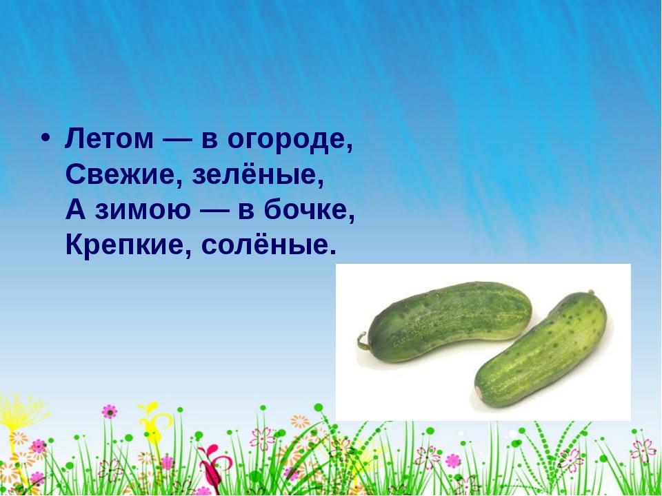 Летом— вогороде, Свежие, зелёные, Азимою— вбочке, Крепкие, солёные.