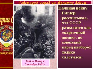 Начиная войну Гитлер рассчитывал, что СССР развалится как «карточный домик»,