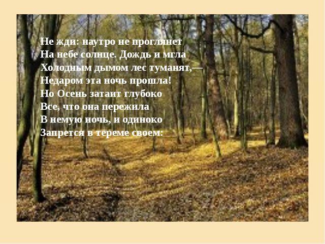 Не жди: наутро не проглянет На небе солнце. Дождь и мгла Холодным дымом лес т...