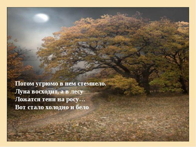 Потом угрюмо в нем стемнело. Луна восходит, а в лесу Ложатся тени на росу… Во...