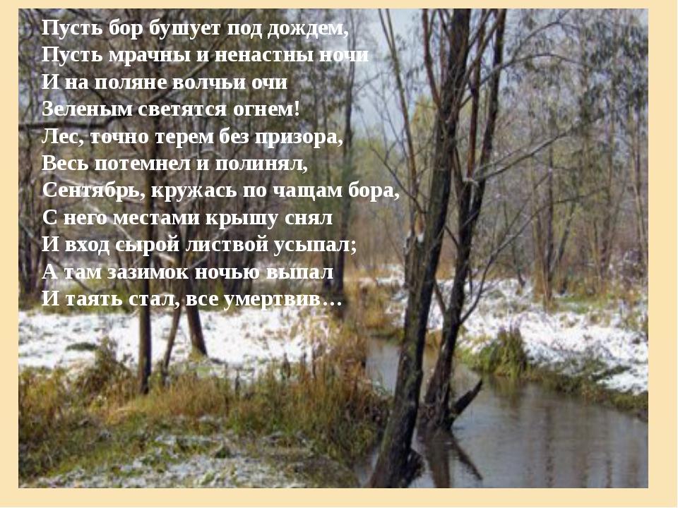 Пусть бор бушует под дождем, Пусть мрачны и ненастны ночи И на поляне волчьи...