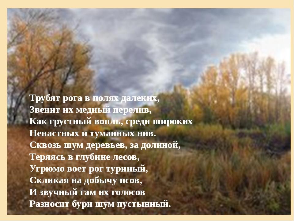 Трубят рога в полях далеких, Звенит их медный перелив, Как грустный вопль, ср...