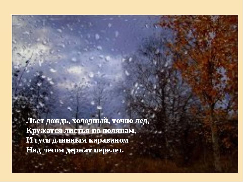 Льет дождь, холодный, точно лед, Кружатся листья по полянам, И гуси длинным к...