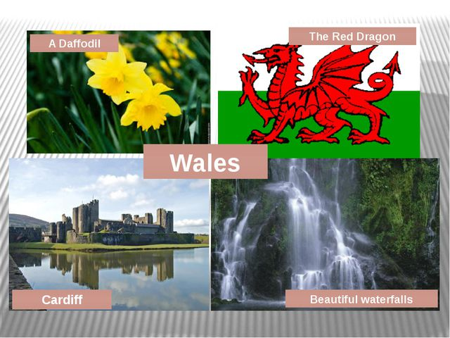 A Daffodil Cardiff The Red Dragon Wales Beautiful waterfalls