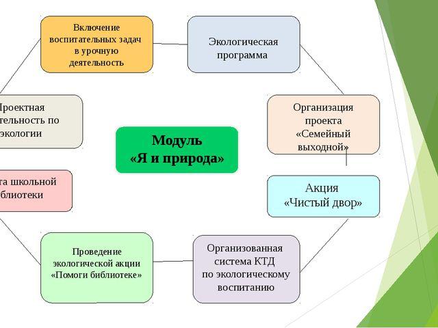Модуль «Я и природа» Акция «Чистый двор»  Организованная система КТД по экол...
