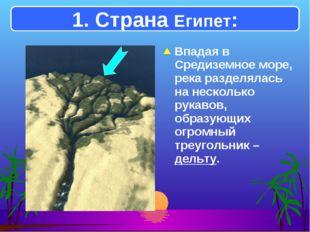 Впадая в Средиземное море, река разделялась на несколько рукавов, образующих
