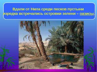 Вдали от Нила среди песков пустыни изредка встречались островки зелени – оази