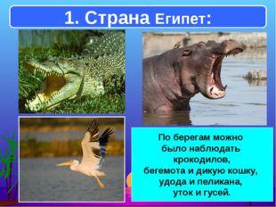 1. Страна Египет: По берегам можно было наблюдать крокодилов, бегемота и дику