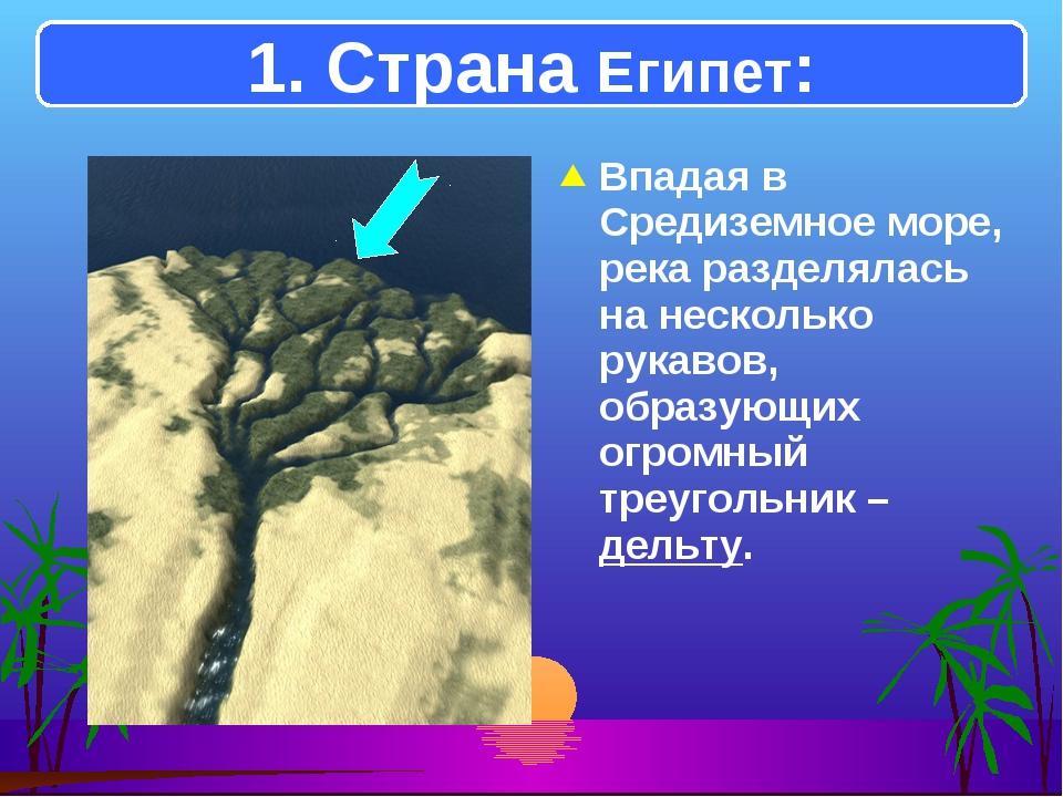 Впадая в Средиземное море, река разделялась на несколько рукавов, образующих...