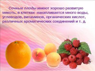 Сочные плоды имеют хорошо развитую мякоть, в клетках накапливается много вод