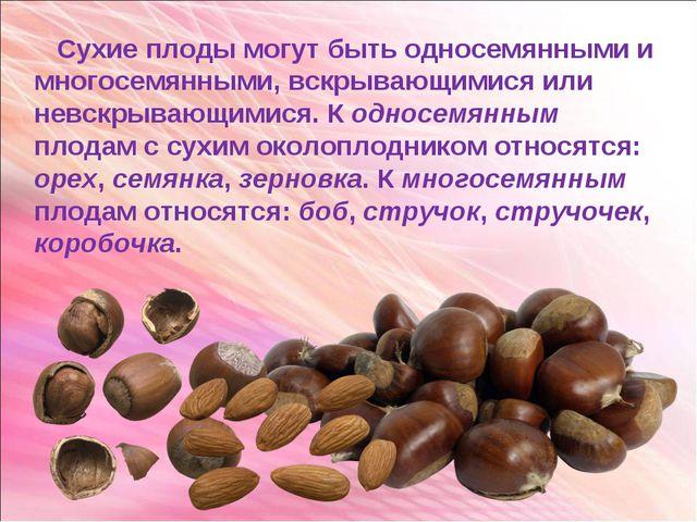 Сухие плоды могут быть односемянными и многосемянными, вскрывающимися или не...