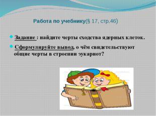 Работа по учебнику(§ 17, стр.46) Задание : найдите черты сходства ядерных кл
