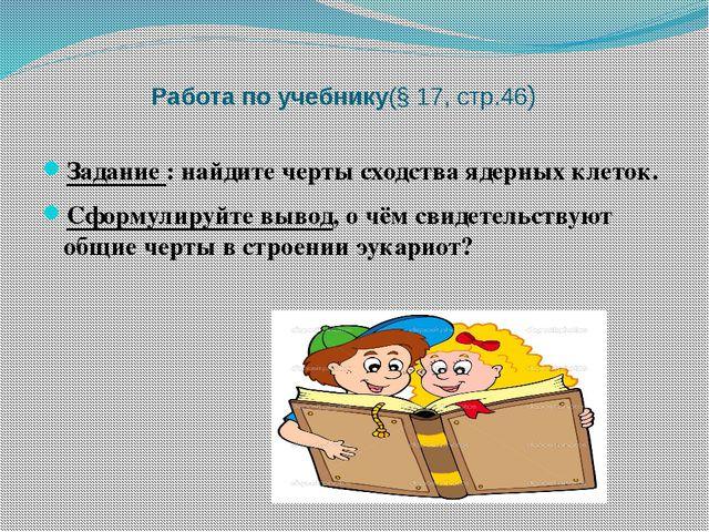 Работа по учебнику(§ 17, стр.46) Задание : найдите черты сходства ядерных кл...