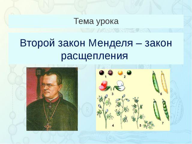 Второй закон Менделя – закон расщепления Тема урока Зорина Наталья Николаевна...