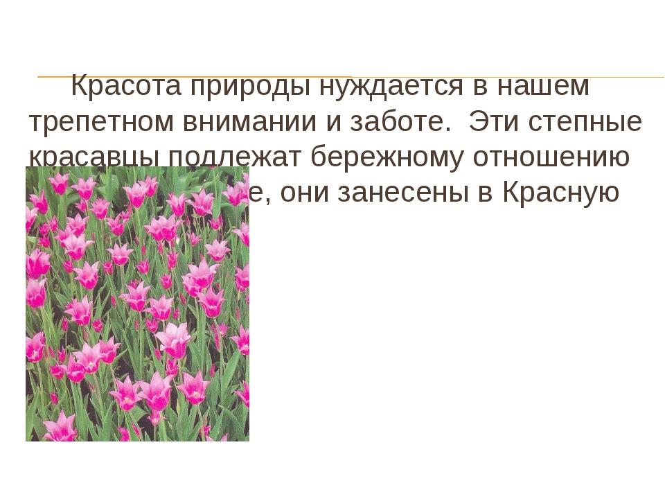 Красота природы нуждается в нашем трепетном внимании и заботе. Эти степные к...