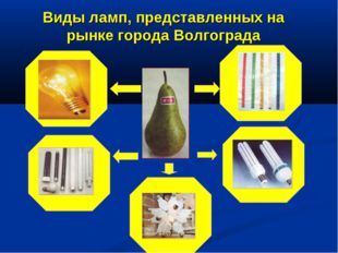 Виды ламп, представленных на рынке города Волгограда
