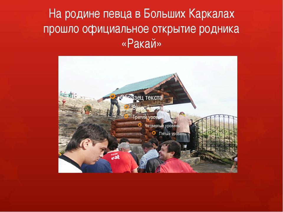 На родине певца в Больших Каркалах прошло официальное открытие родника «Ракай»