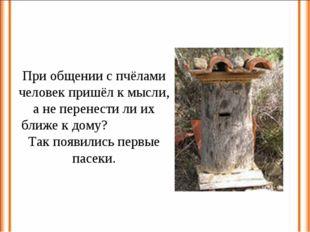 При общении с пчёлами человек пришёл к мысли, а не перенести ли их ближе к до