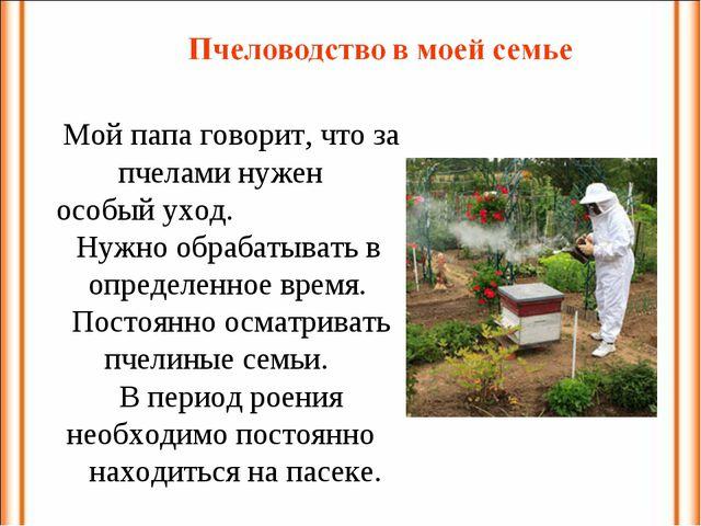 Мой папа говорит, что за пчелами нужен особый уход. Нужно обрабатывать в опре...