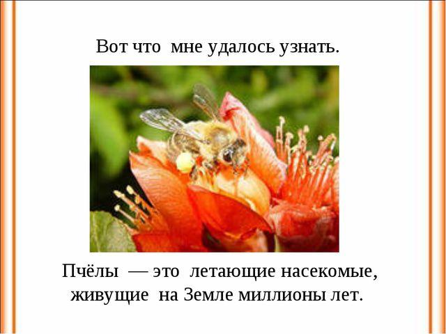Вот что мне удалось узнать. Пчёлы — это летающие насекомые, живущие на Земле...