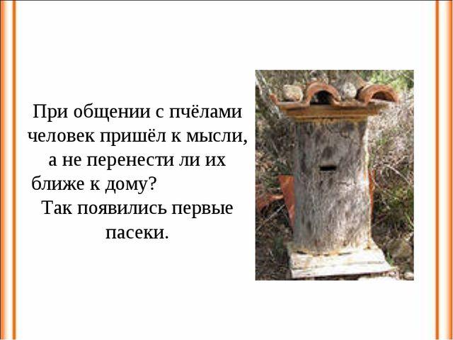 При общении с пчёлами человек пришёл к мысли, а не перенести ли их ближе к до...