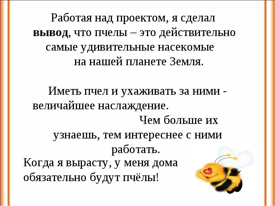 Работая над проектом, я сделал вывод, что пчелы – это действительно самые уди...
