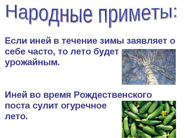 Если иней в течение зимы заявляет о себе часто, то лето будет урожайным. Иней...