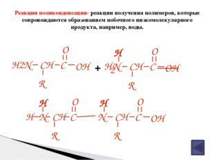 Выводы по теме урока Аминокислоты – это бифункциональные органические соедине