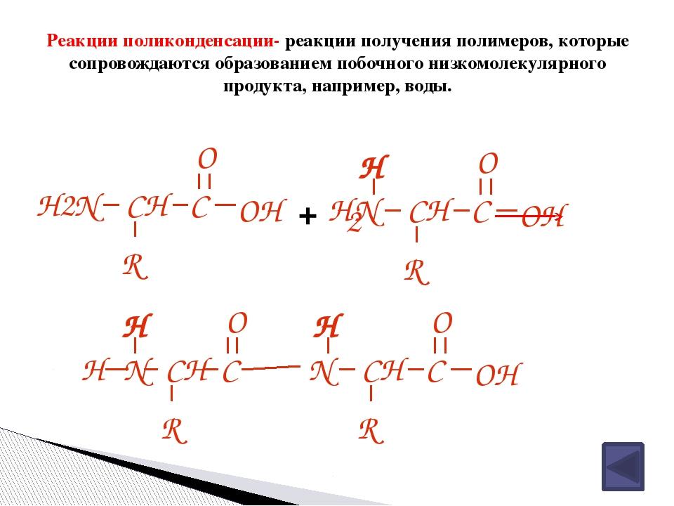 Выводы по теме урока Аминокислоты – это бифункциональные органические соедине...