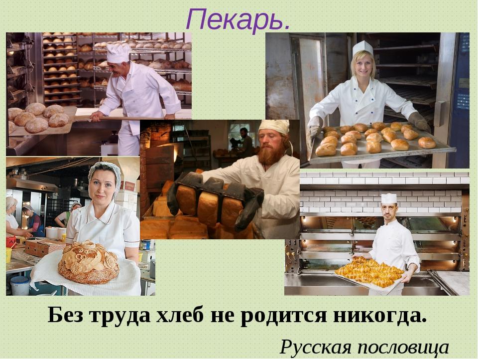 Без труда хлеб не родится никогда. Без труда хлеб не родится никогда. Русск...