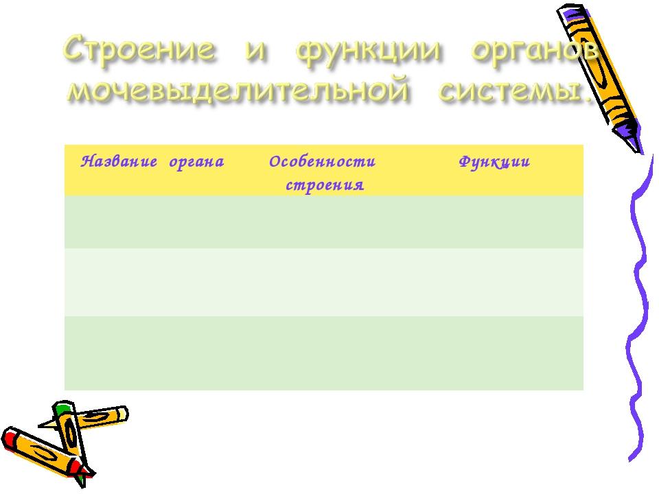 Название органаОсобенности строенияФункции