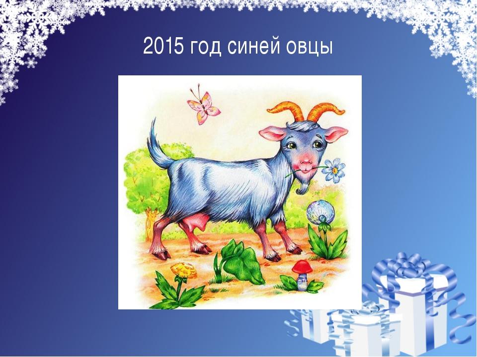 2015 год синей овцы