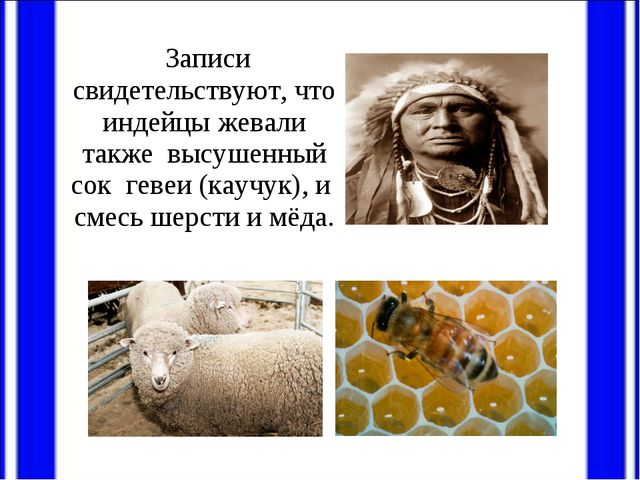 Записи свидетельствуют, что индейцы жевали также высушенный сок гевеи (каучу...