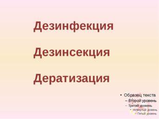 Дезинсекция Дезинфекция Дератизация