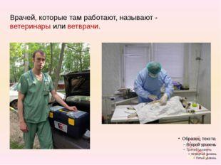 Врачей, которые там работают, называют - ветеринары или ветврачи.