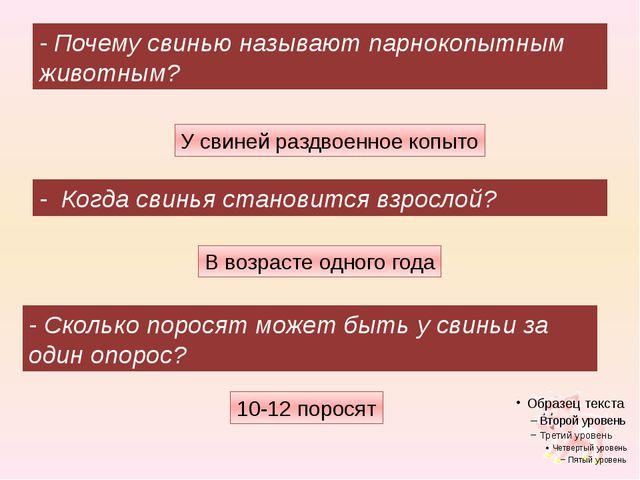 10-12 поросят - Почему свинью называют парнокопытным животным? - Когда свинья...