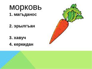 морковь 1. магъданос 2. эрылгъан 3. хавуч 4. керкидан