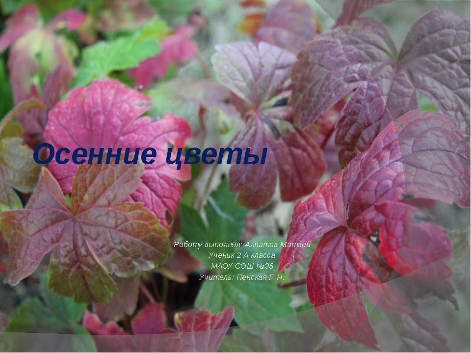 Осенние цветы Работу выполнял: Алпатов Матвей Ученик 2 А класса МАОУ СОШ №35...