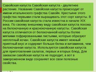 Савойская капуста Савойская капуста - двулетнее растение. Название Савойская