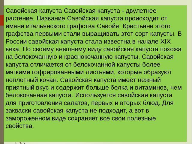 Савойская капуста Савойская капуста - двулетнее растение. Название Савойская...