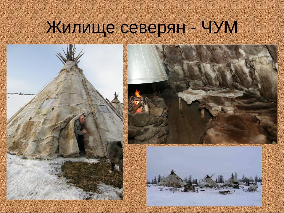 Жилище северян - ЧУМ